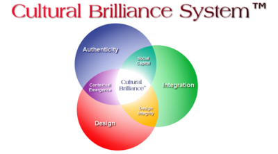 cultural-brilliance-system