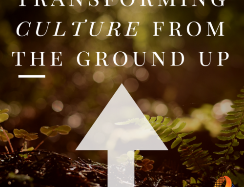 Transforming Culture From The Ground Up