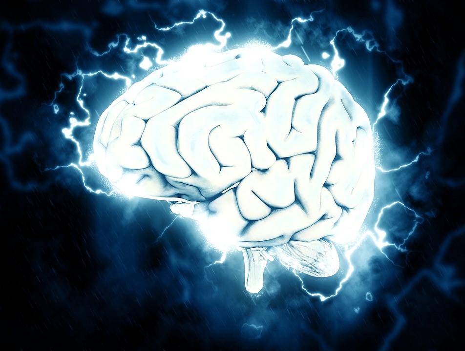 emotional brain claudette rowley cultural brilliance