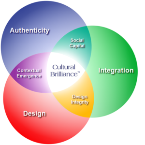cultural brilliance system model red blue green