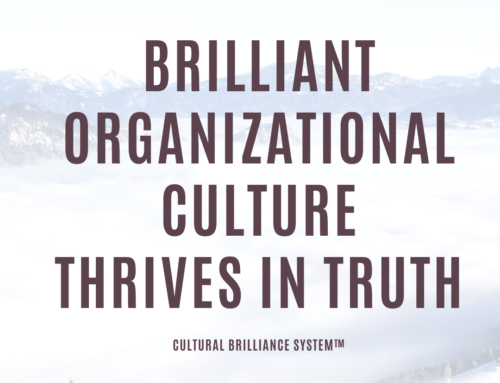 Brilliant Organizational Culture