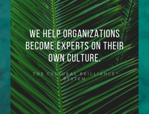 Become an Expert in Your Company Culture