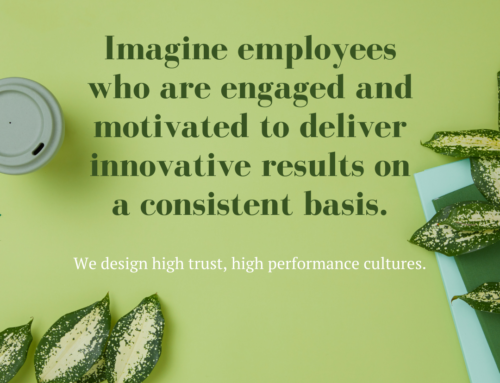 Implement a High Trust, High Performance Company Culture